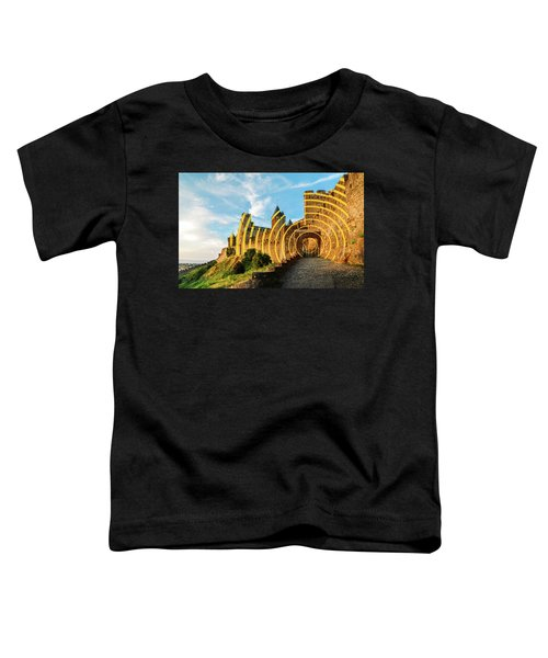 Carcassonne's Citadel, France Toddler T-Shirt