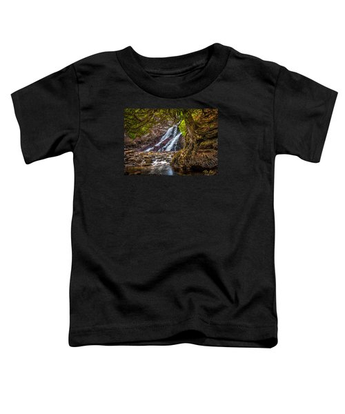Toddler T-Shirt featuring the photograph Caribou Falls In Fall by Rikk Flohr