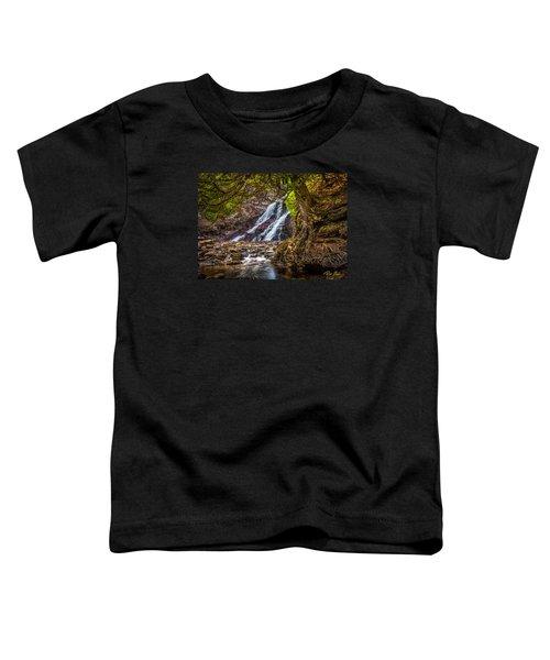 Caribou Falls In Fall Toddler T-Shirt