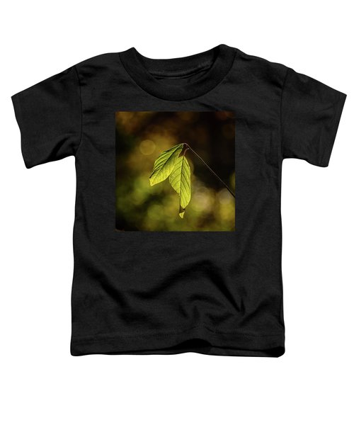 Caught In The Light Toddler T-Shirt