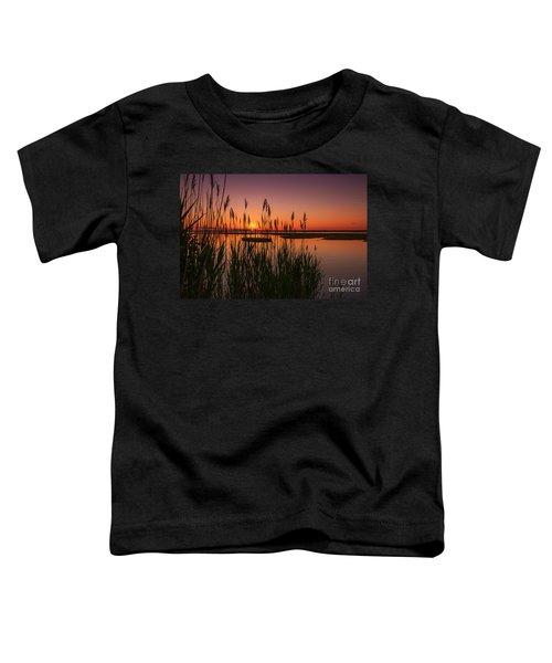 Cedar Beach Sunset In The Reeds Toddler T-Shirt
