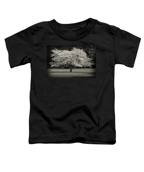Cherry Blossom Tree - Ocean County Park Toddler T-Shirt