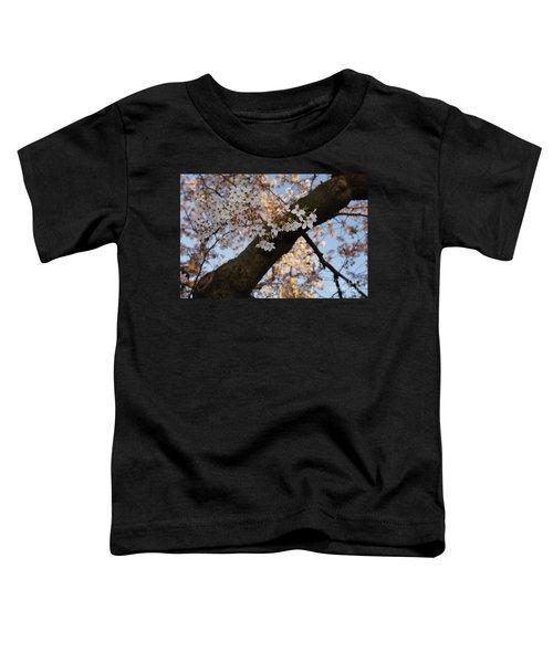 Cherry Blossoms Toddler T-Shirt by Megan Cohen