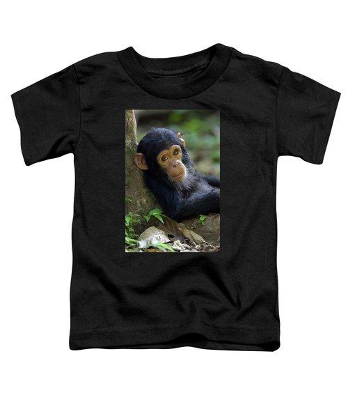 Chimpanzee Pan Troglodytes Baby Leaning Toddler T-Shirt