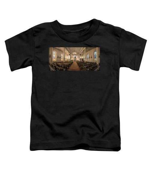 Church Of The Assumption Of The Blessed Virgin Pano Toddler T-Shirt