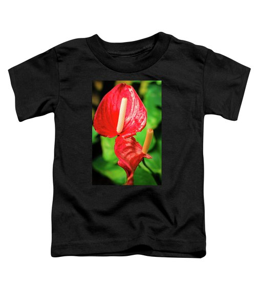City Garden Flowers Toddler T-Shirt