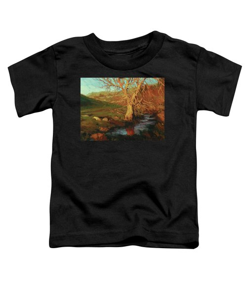 Close Of Day Toddler T-Shirt