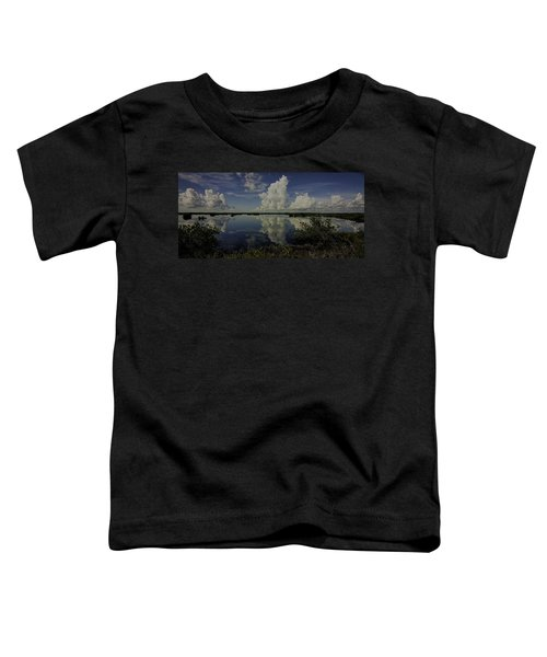 Clouds And Reflections Toddler T-Shirt