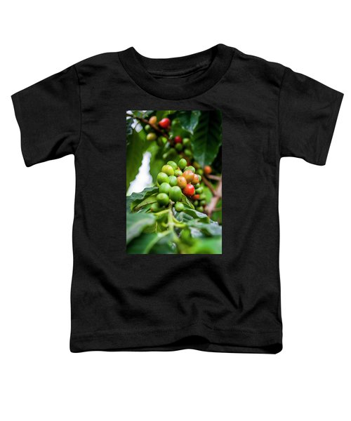Coffee Plant Toddler T-Shirt