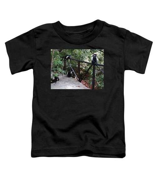 Colobus Monkeys At Sands Chale Island Toddler T-Shirt