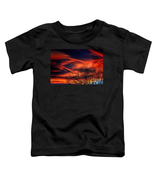 Colorado Fire In The Sky Toddler T-Shirt