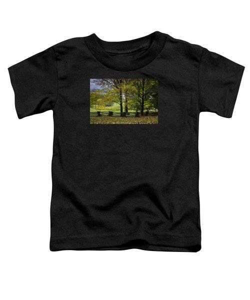Colors At Mac Rae Field Toddler T-Shirt