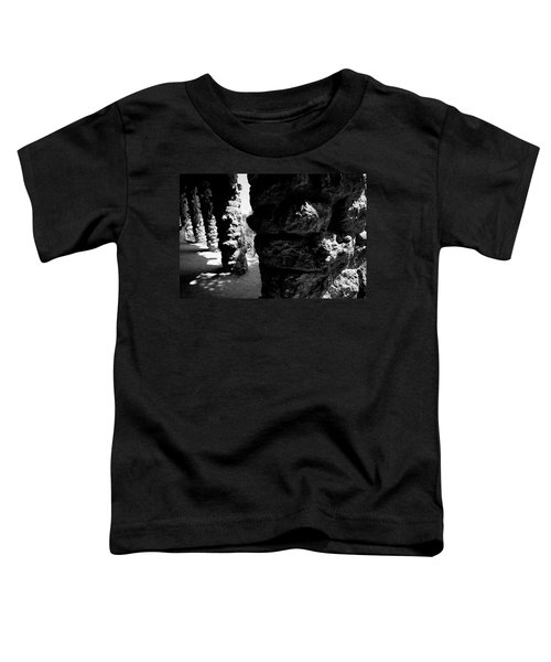 Columns Of The Park Guell Toddler T-Shirt