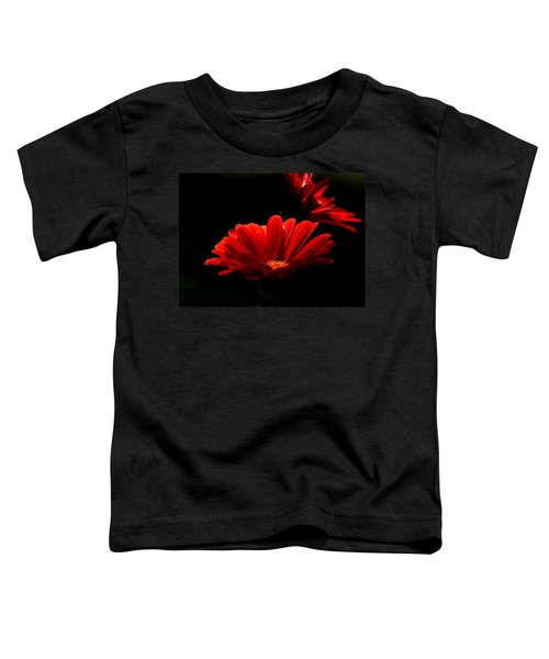 Coming In To The Light Toddler T-Shirt