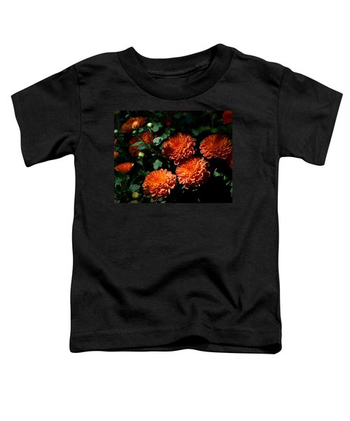 Coming Out Of The Shadows Toddler T-Shirt