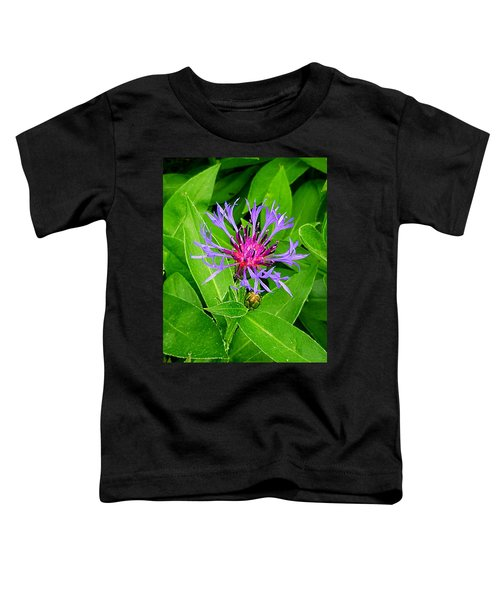 Centaurea Montana Toddler T-Shirt