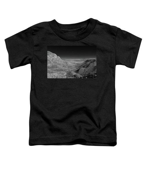 Coronado National Memorial In Infrared Toddler T-Shirt