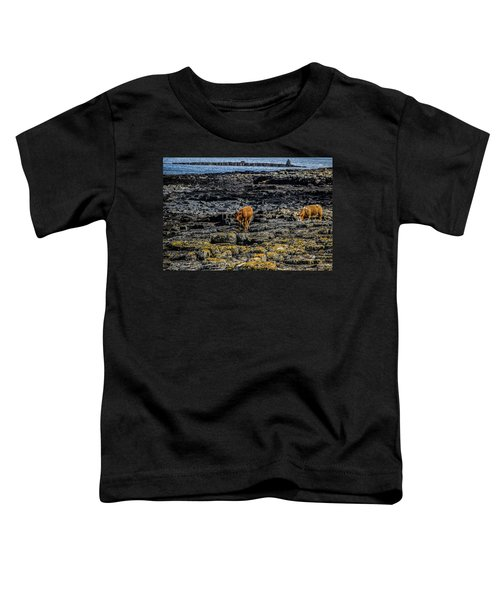 Cows On The Rocks Toddler T-Shirt
