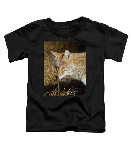 Coyote In The Wild Toddler T-Shirt