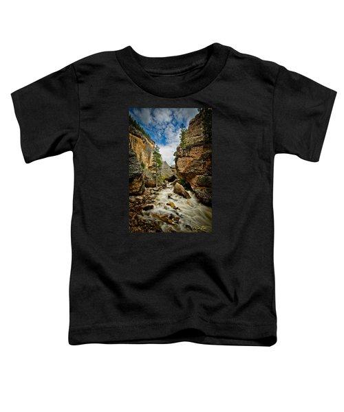 Crazy Woman Canyon Toddler T-Shirt