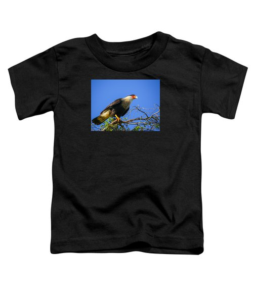 Crested Caracar Toddler T-Shirt