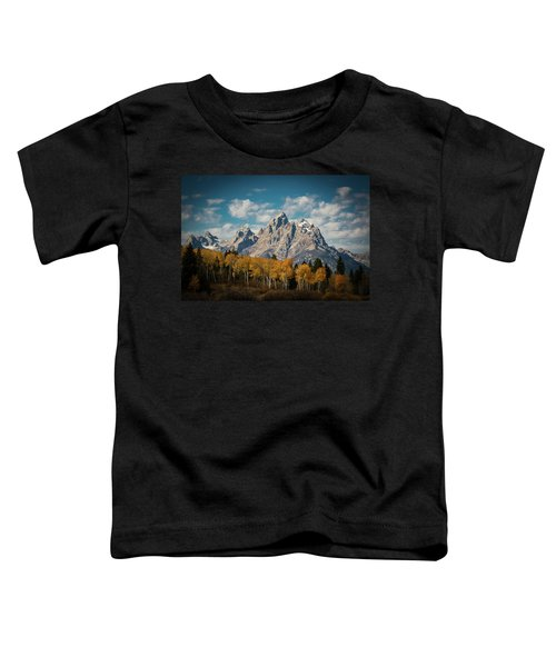 Crown For Tetons Toddler T-Shirt by Edgars Erglis