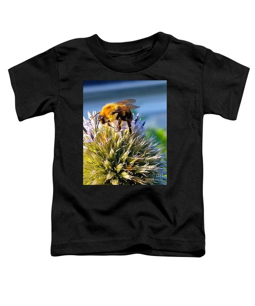 Curious Bee Toddler T-Shirt
