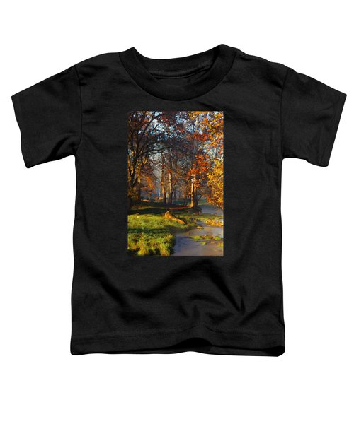 Curry Stream Fall Toddler T-Shirt