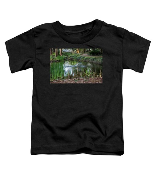Cypress Knees 02 Toddler T-Shirt