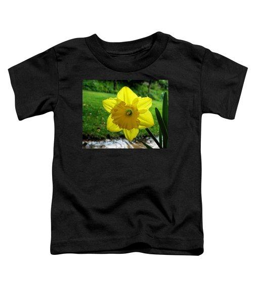 Daffodile In The Rain Toddler T-Shirt