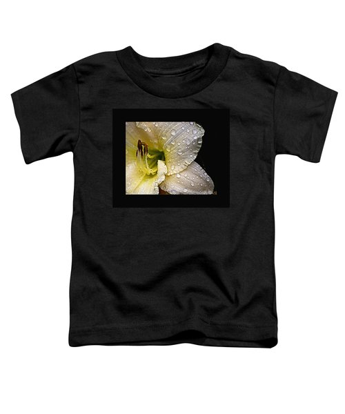 Daylilly 1 Toddler T-Shirt