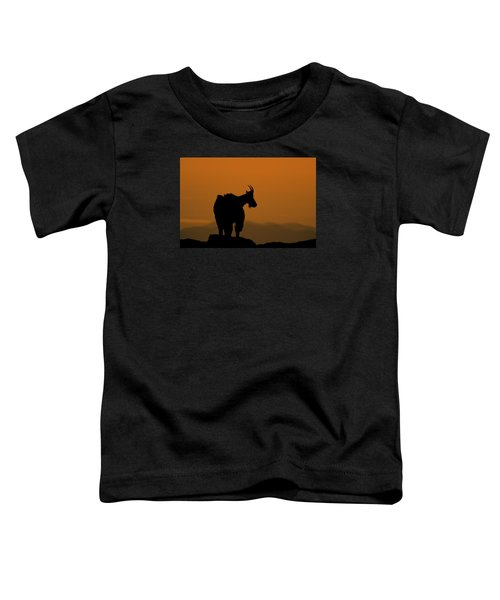 Toddler T-Shirt featuring the photograph Day's End by Gary Lengyel