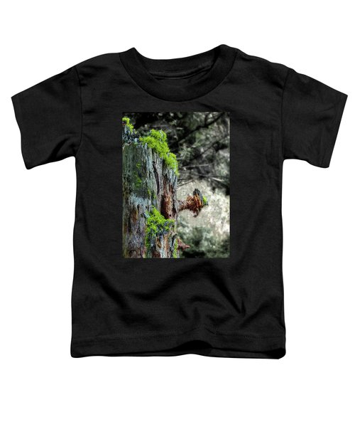 Death And Life Along The Path Toddler T-Shirt