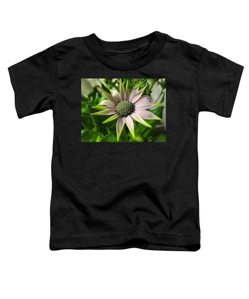 Delicate Dreamer Toddler T-Shirt