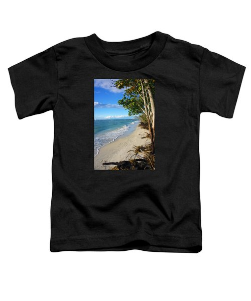 Delnor Wiggins Pass State Park Toddler T-Shirt