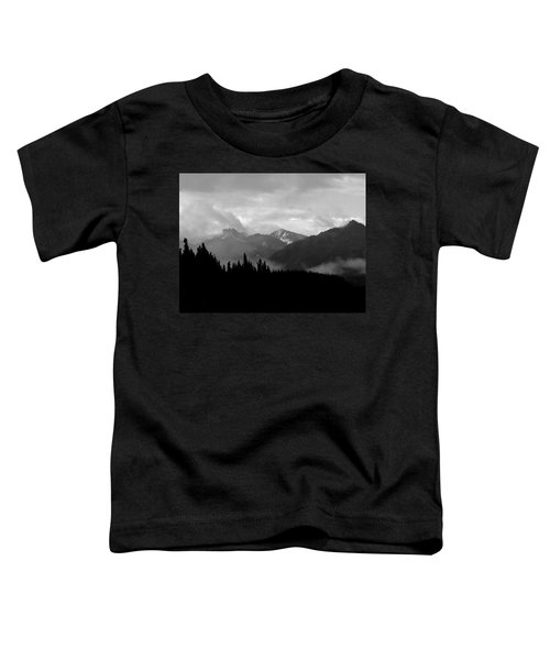 Denali National Park 1  Toddler T-Shirt