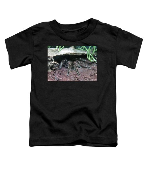 Desert Tarantula Toddler T-Shirt