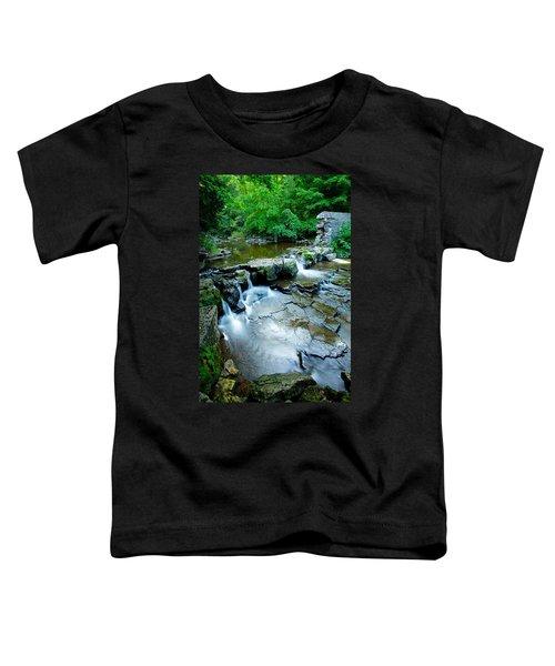 Devils River 1 Toddler T-Shirt