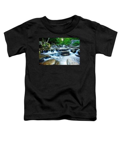 Devils River 2 Toddler T-Shirt