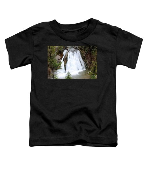 Douglas Falls  Toddler T-Shirt