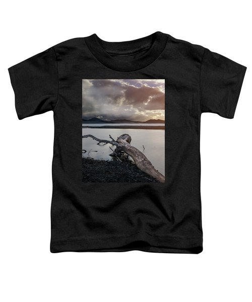 Driftwood At The End Of The World Toddler T-Shirt