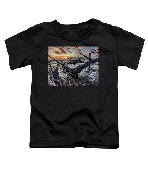Driftwood Beach 4 Toddler T-Shirt