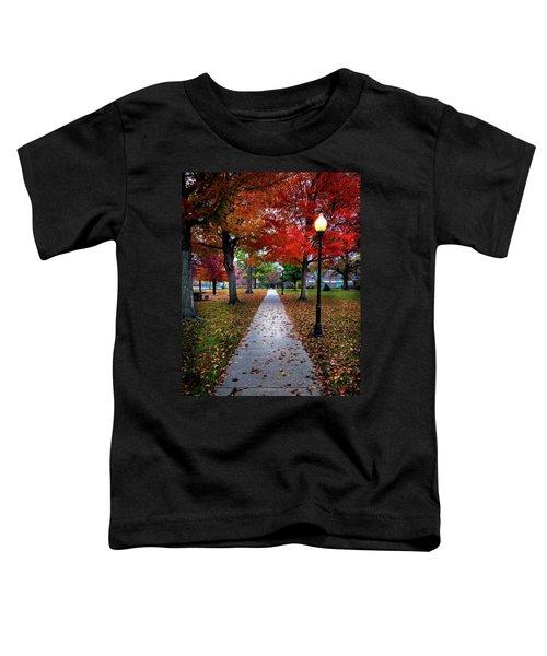 Drury Fall Toddler T-Shirt