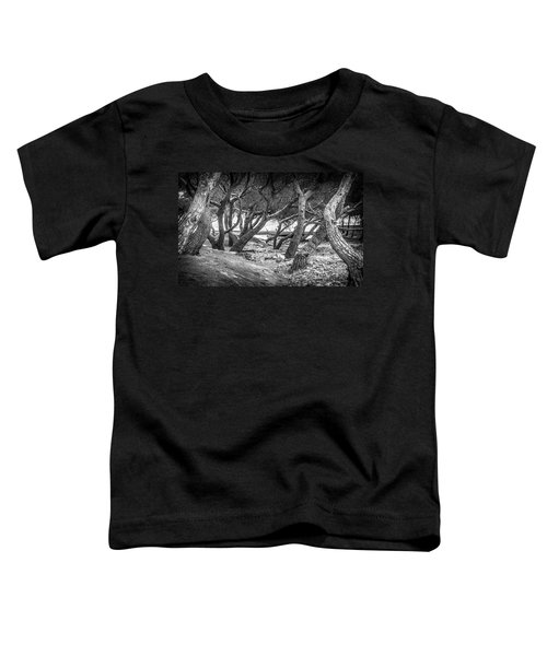 Dry Riverbed  Toddler T-Shirt