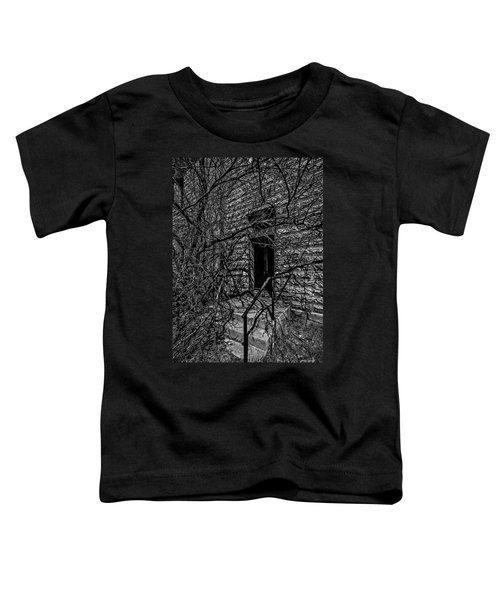 Eerie Entrance To An Old School Toddler T-Shirt