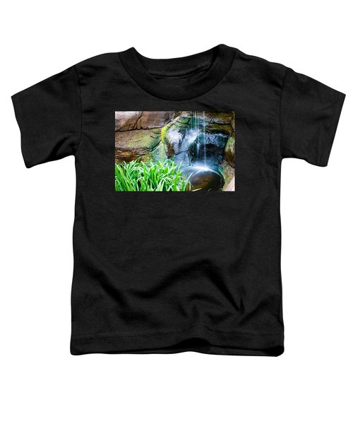 El Paso Zoo Waterfall Long Exposure Toddler T-Shirt