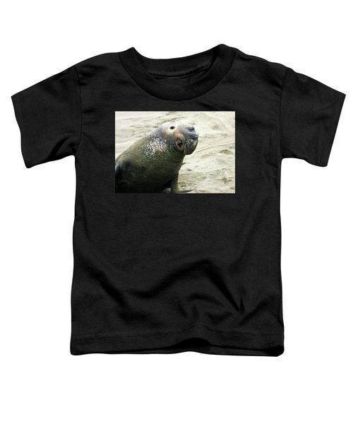 Elephant Seal Toddler T-Shirt