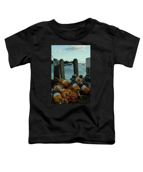 End Of Season At Owls Head Toddler T-Shirt