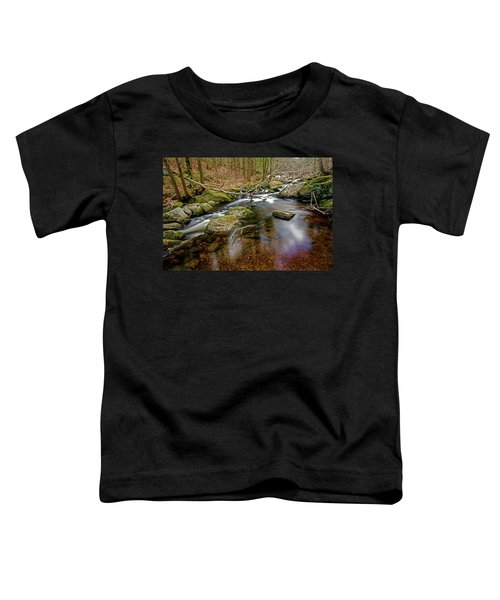 Enders Falls Toddler T-Shirt