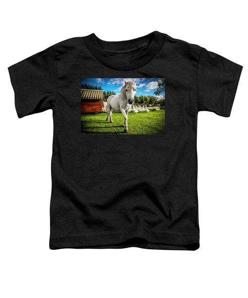English Gypsy Horse Toddler T-Shirt